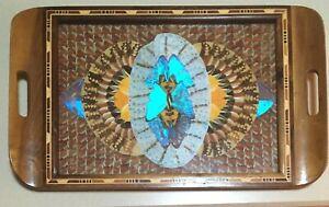 "Vintage Brazilian Butterfly Wing Tray - Blue Morpho - 11 1/4"" x 18 3/8"" - EUC"