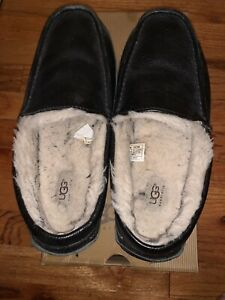 Men's Ascot Uggs slippers size 11