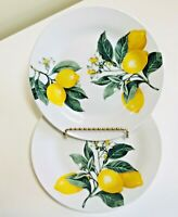 New Royal Norfolk Yellow Lemons Salad Plates SET OF FOUR 4 Citrus Summer Dishes