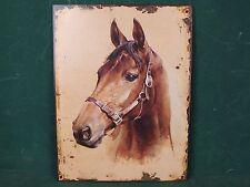 Großes Blechschild Pferd Kopf Antik Stil Nostalgie Schild mit Aufhänge Ösen