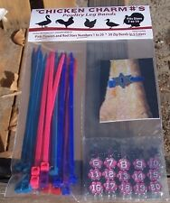 Chicken Charm Legbands legrings (pkt 20) Pink Numbers
