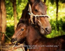 Religious Motivational Poster Horse Riding Cowgirl Boots Isaiah 66:13 RELG17