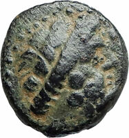 ARADOS in PHOENICIA Authentic Ancient 206BC Greek Coin w ZEUS & GALLEY i75606
