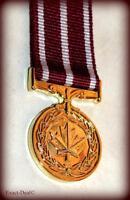 Canada - Canadian Medal of Military Valour Miniature Mini Medal