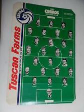 1980 New York Cosmos Soccer Club Poster Franz Beckenbauer Chinaglia NASL Vintage