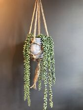 Artificial String of Pearls Faux House Plant in Pot & Hanging Macrame Planter