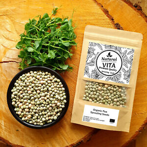 Organic Sprouting Pea Seeds - Growing Green Shoots sprouts GMO Free UK Stock