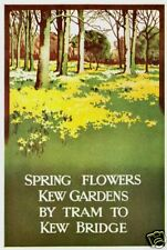 1911 London Transport Kew Gardens Poster A3 impresión