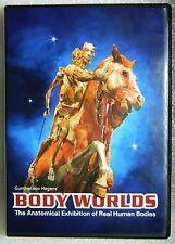LIKE NEW Body Worlds Documentary Human Bodies MINUS Skin DVD Other Animals, too.