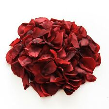 Burgundy natural biodegradable rose petals for wedding confetti / decoration