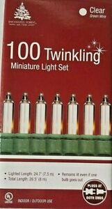 Set of 100 Twinkling Clear Christmas Miniature String Lights, Green Wire, NEW