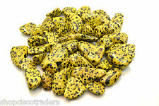 Yellow Dalmatian Jasper 20mm QTY1 Tumbled Stone Healing Crystal Reality Dreams