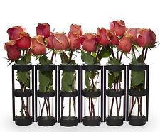 Danya B™  Six Wide Tube Hinged Vases QB280