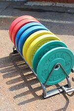 York Colored Bumper Plate Weight Set 260LBS