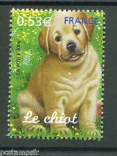FRANCE 2006, timbre 3898, CHIEN, CHIOT, ANIMAUX, neuf**, MNH STAMP, ANIMAL, DOG