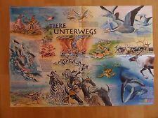 59x41 Poster + Tiere unterwegs + Krabben Lachse Zebra Gnu Kinder MEDIZINI 5-2017