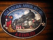 2013 BSA National Annual Meeting Patch Scout oval held in Grapevine Texas May 22