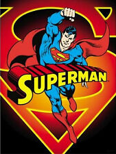 "Flag DC Comics Superman 30"" x 40"" Fabric Print"