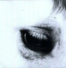 Creepoid - Horse Heaven [New Vinyl LP] Ltd Ed