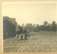 Algérie, Biskra (بسكرة) Vintage print.  Tirage platine  8x8  Circa 1895