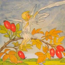 Scarce.! Autumn Fairy Among Rose Hips Berries,Ida Bohatta Blank Greeting Card