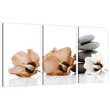 Set of 3 Piece Brown Canvas Wall Pictures Flowers Bedroom Prints 3073