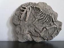 Dinosaur fossil replica (T-rex)