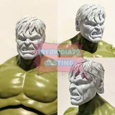 Marvel Legends Incredible Hulk Head Sculpt Cast Edward Norton AoU Custom