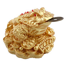 Gold feng shui argent fortune chinois i ching grenouille crapaud monnaie store decor