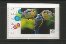 PICTURE POSTAGE    P  Butterflies frame   # 2590a  PERSONALIZED     MNH   #1