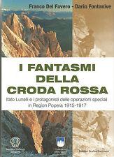 WW1 GRANDE GUERRA CRODA ROSSA SENTINELLA POPERA CIMA UNDICI SESTO 1915-17