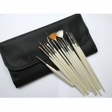 Glow Professional 15 piece Nail Art Brushes Set in Exquisite Pouch