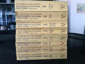 Istituzioni di anatomia dell'uomo G. Chiarugi / L. Bucciante (8 volumi)
