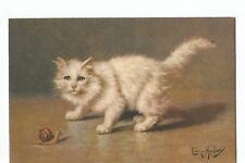 ILLUSTRATION CHAT BLANC ET ESCARGOT , CAT