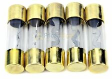 Pack of 5 Car Audio Amp Amplifier Glass 30 A Amp Agu Gold Plated Fuse Usa Ship