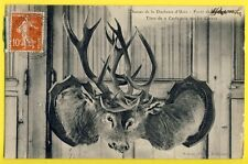 cpa TROPHÉE de CHASSES Duchesse d'Uzès HUNTING TROPHY Têtes de CERF Deer heads