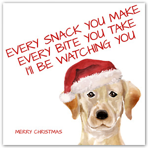 CHRISTMAS Labrador Dog Card Funny Xmas Song Lyrics
