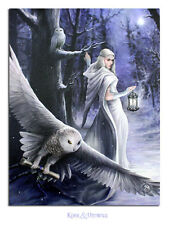 """Anne Stokes Canvas Wall Plaque: """"Midnight Messenger"""" Snow Witch with Owl"""