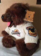 Disneys California Adventure Stuffed Bear WT Movable Legs, Sweater