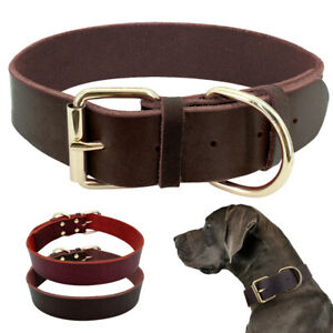 Small Medium Large Leather Dog Collar Soft Padded with Brass Buckle for Pitbull