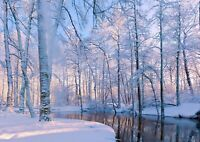 Cool Snowy Forest Poster Size A4 / A3 Snow Winter Nature Poster Gift #12205