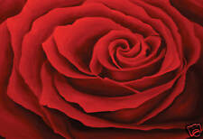 BEAUTIFUL FLORAL CANVAS ART RED PINK ROSE PAINTING A1