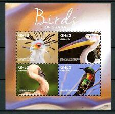 Ghana 2015 MNH Birds of Ghana 4v M/S Flamingos Sunbirds Pelicans Stamps