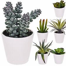 Künstliche Zimmerpflanze Kunstpflanzen im Blumen Topf Sukkulenten Kunstblumen