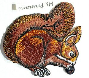 Squirrel Embroidered Patch Iron Sew On Clothes Dress Jacket Animal Bird Badge