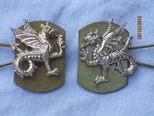 Exeter university, officier training corps, OTC, Collar agita, col insigne