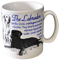 Labrador Retriever - Ceramic Coffee Mug - Dog Origins Breed