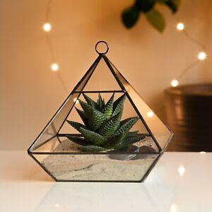 Pyramid Glass Geometric Succulent Terrarium Tabletop Moss Plant Flower Display