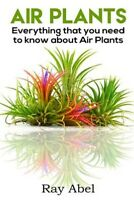 Air Plants : All You Need to Know About Air Plants in a Single Book!, Paperba...