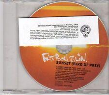 (EN47) FatBoy Slim, Sunset (Bird Of Prey) - 2000 DJ CD